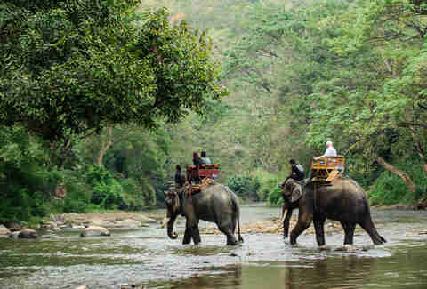 Traveling on elephants