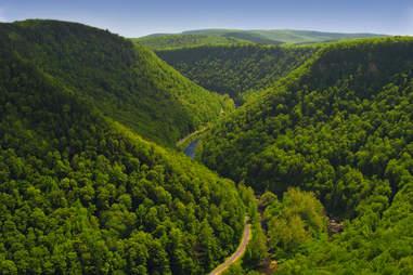 Pine Creek Gorge
