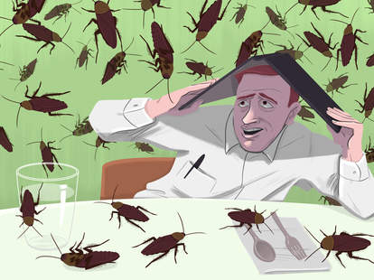 Roaches in a restaurant.