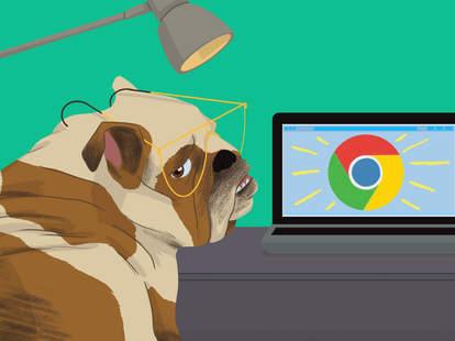 bulldog at a computer