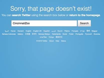 Cincinnati Zoo Social Media Harambe