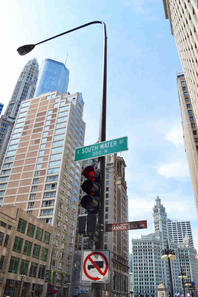 best chicago neighborhoods for black professionals