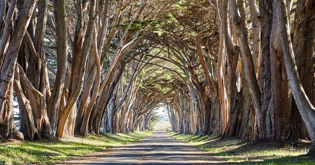 Most Beautiful Places In California Road Trip Ideas Thrillist