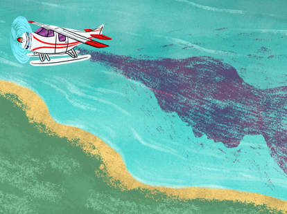 airplane cremains pilot