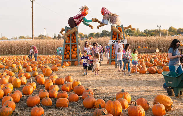 Everything You Must Do in the Twin Cities This Fall