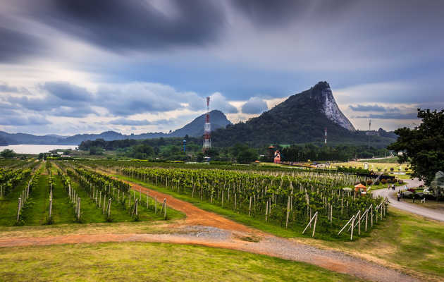 The Best Destination Wine Regions You've Never Heard Of
