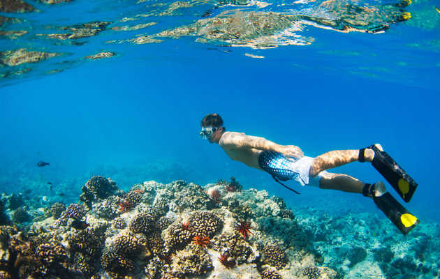 The Best Spots for Snorkeling in Oahu
