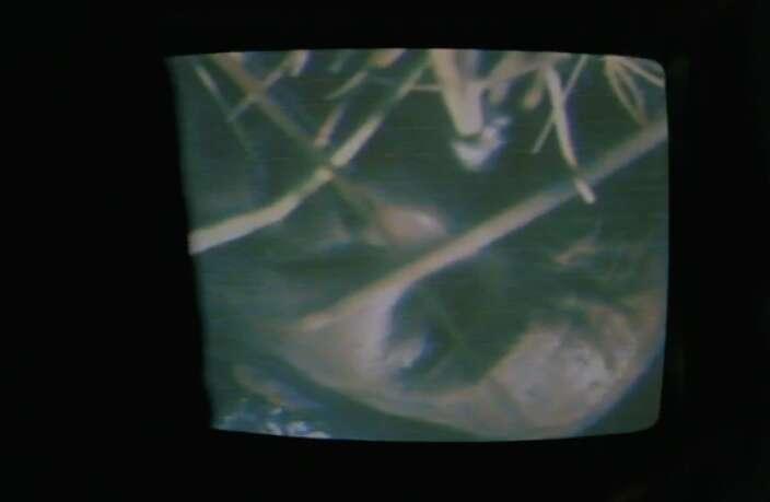 american horror story my roanoke nightmare dennis o'hare