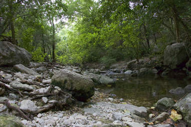Bull Creek Park & Greenbelt