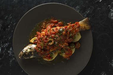 Barbacco fish red sauce