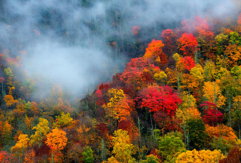 Great Smoky Mountains fall