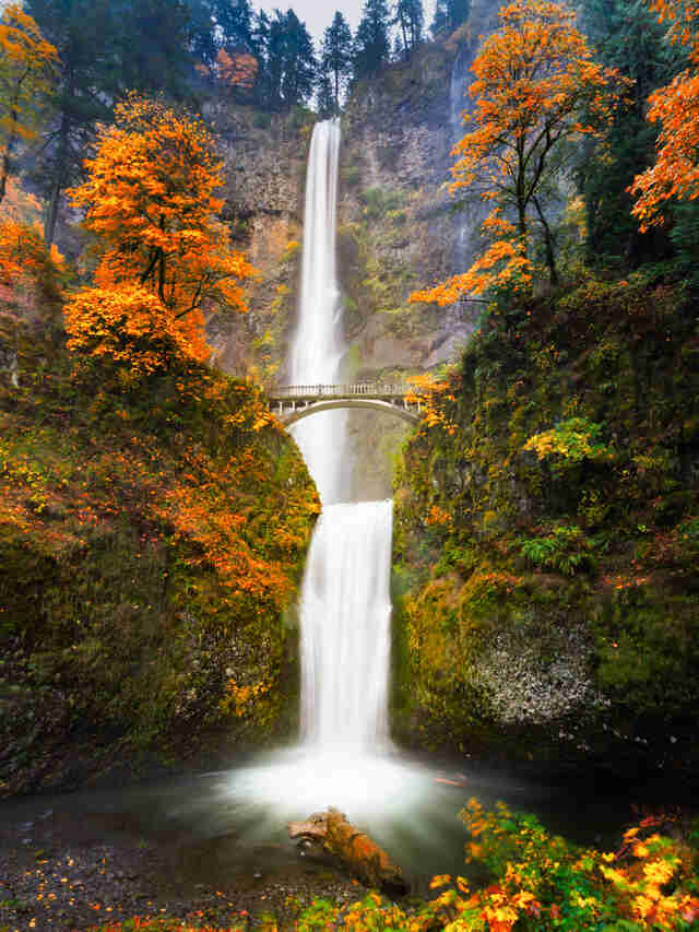 Columbia River Oregon fall colors