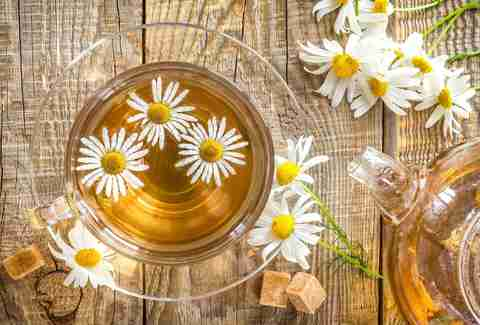 Best Way To Drink Camomile Tea