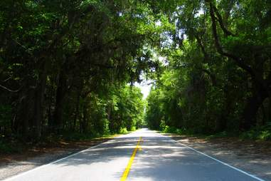 Ashley River Road between Bees Ferry and Summerville