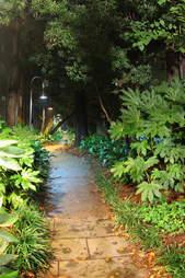 The Gateway Walk