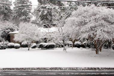 blizzard charlotte
