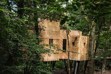 rent a treehouse