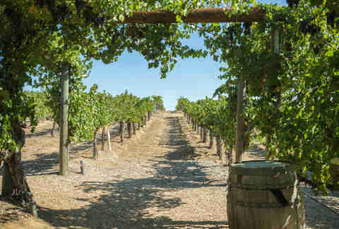 Temecula Valley Winery