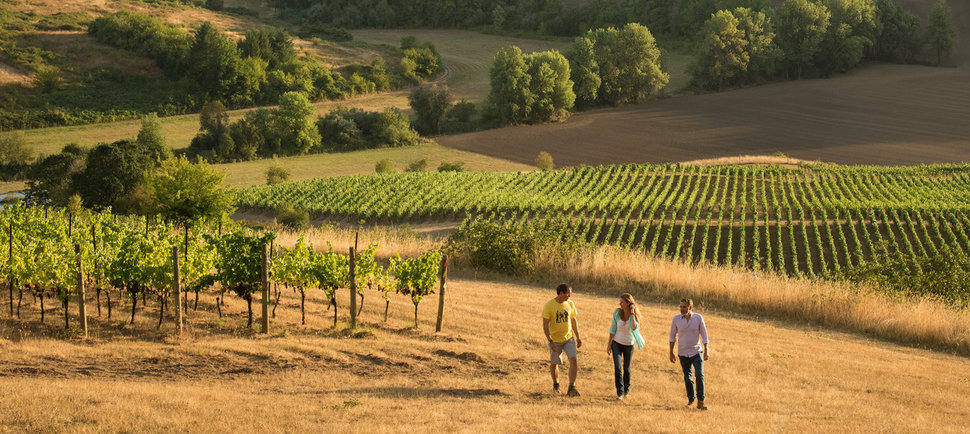The Willamette Valley Wineries You Should Absolutely Know if You Care About Oregon Wine