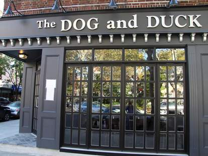 The Dog and Duck Queens New York