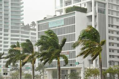 hurricane miami