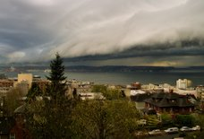 Seattle's About to Get Smashed by a Historic Windstorm. Here's What You Need to Know.