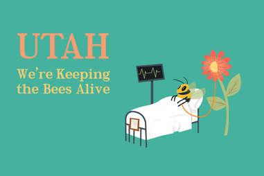Utah Slogan