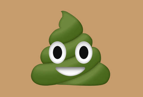 Why Is My Poop Green Bright Green Poop Explained Thrillist