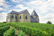 How to Explore French Wine Country for Costs Less a Bottle of Dom Perignon