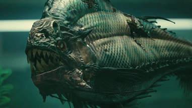 Piranha 3d Fish