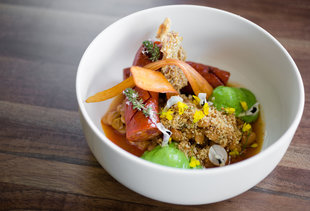 SF's Best New Restaurants That Opened in October