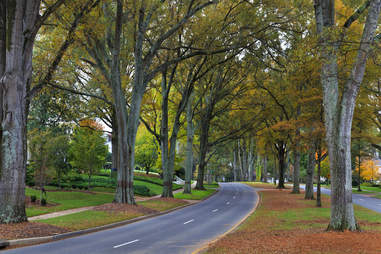 Queens Road West in Charlotte, North Carolina