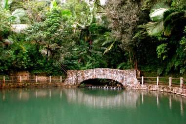 El Yunque Puerto Rico