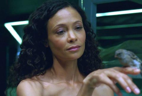 Westworld Thandie Newton Bird