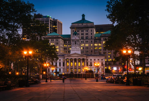 Brooklyn Borough Hall, Downtown Brooklyn