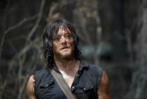 the walking dead daryl norman reedus