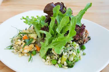 Tendergreen salad