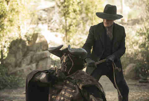 ed harris on hbo westworld
