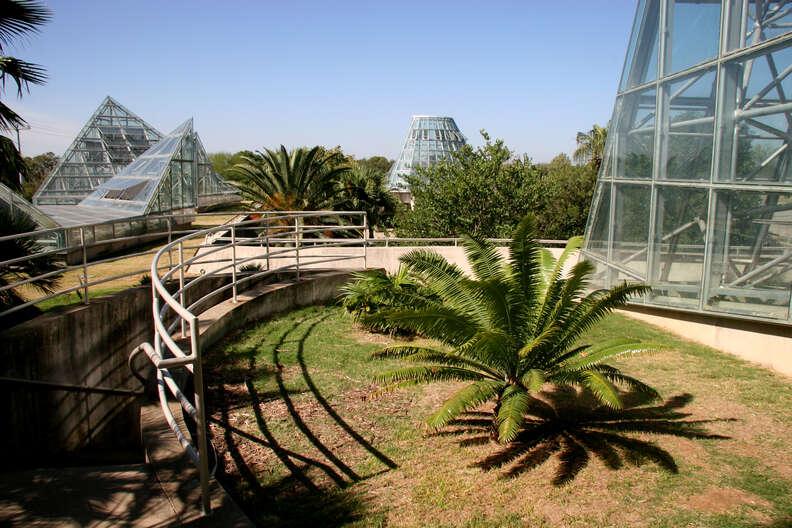 san antonio botanical garden