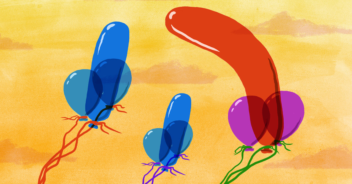 All the Things You've Ever Wanted to Know About Penis Enlargement Surgery