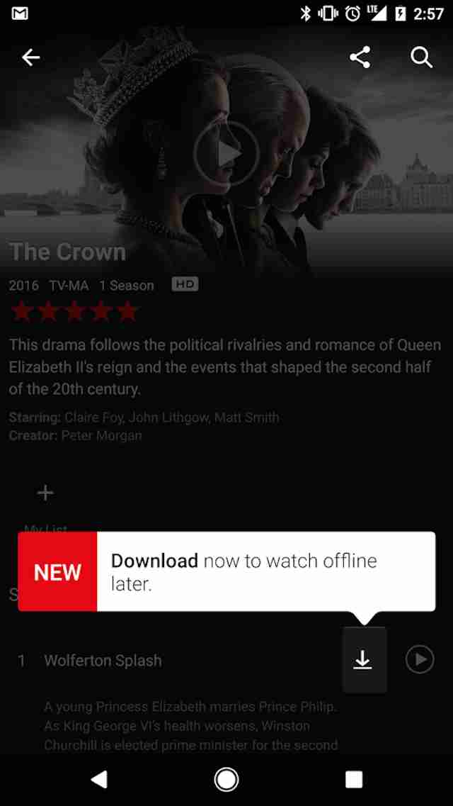netflix downloads offline viewing