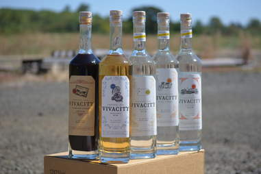 Vivacity Spirits