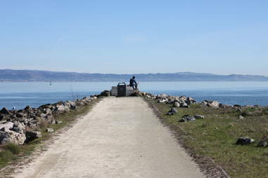 bayview-hunter's point sf