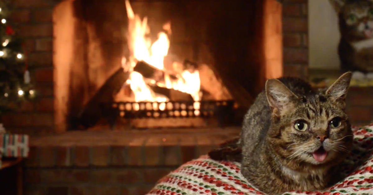 Yule Log Livestream 2016: Best YouTube Channel Options to Watch ...