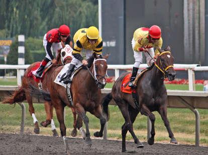 Horses... racing
