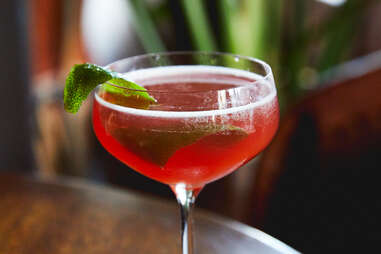 yucatan nightjar cocktail