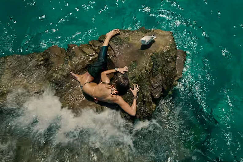 the shallows best horror movies 2016
