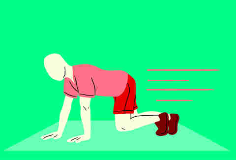 bear crawls exercises