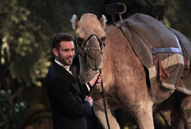 'The Bachelor' Premiere: Nick Viall Meets the Ladies, But Will Never Find Love
