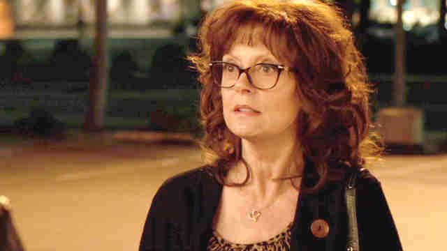 Susan Sarandon The Meddler